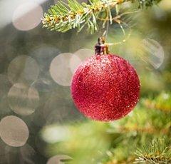 christmas-1890467_640.jpg